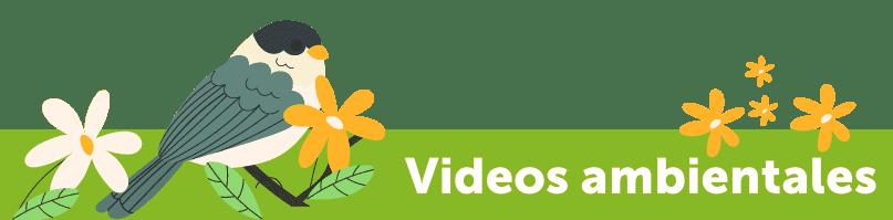titulo-videos-niños